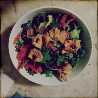 Capucine Salad